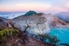 Kawah Ijen volcano with trees during beautiful sunrise in East Java, Indonesia stock photo