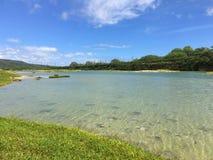 Kawai'ele Waterbird fristad på den Kauai ön, Hawaii royaltyfri bild