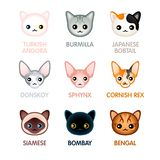 Cute cat icons, set I vector illustration