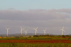 Kawailoa Wind Farm Hawaii Royalty Free Stock Images