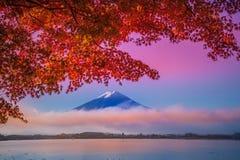Kawakuchiko湖的富士山 免版税库存图片