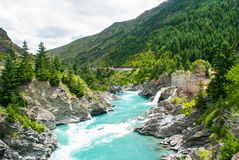 Kawarau河和森林,昆斯敦,新西兰 免版税库存照片