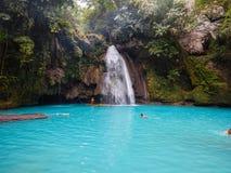 Kawasan, Filippine, oslob Fotografia Stock