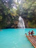 Kawasan Filippinerna, oslob Arkivfoto