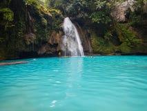 Kawasan Filippinerna, oslob Fotografering för Bildbyråer