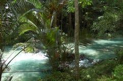 Kawasan flod i Cebu, Filippinerna Fotografering för Bildbyråer