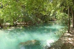 Kawasan river in Cebu, Philippines Royalty Free Stock Photos