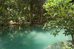 Kawasan river in Cebu, Philippines Royalty Free Stock Photo