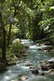 Kawasanrivier in Cebu, Filippijnen Stock Foto's
