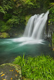 Kawazu waterfall trail, Izu Peninsula, Japan Royalty Free Stock Photo