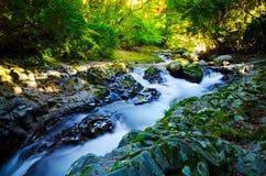 Kawazunanadaru Falls, Japan. Royalty Free Stock Photos