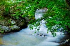 Kawazunanadaru Falls, Japan. Arkivfoton