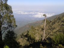 Kawi berg Arkivfoton