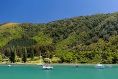 kawiarni lato krajobrazowy nowy Zealand Obrazy Stock