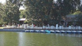 Kawiarnia blisko stawu z łodziami zbiory wideo