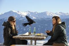 kawiarnia nad miasto Innsbruck Austria Alpes, Grudzień 2013 Fotografia Royalty Free