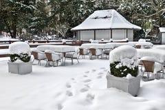 Kawiarnia z śniegiem. Zimy landscaper. Zdjęcia Stock