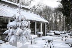Kawiarnia z śniegiem. Zimy landscaper. Zdjęcie Stock