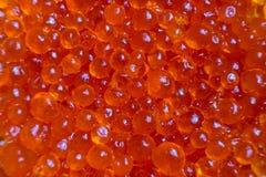 Kawior parodii ryba czerwony zakończenie up Tło czerwony kawior Zdjęcia Royalty Free