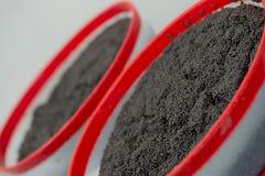 Kawioru zakład przetwórczy, zakończenie jesiotrów jajka Fotografia Stock