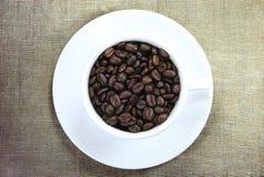 Kawowa fasola Zdjęcie Royalty Free