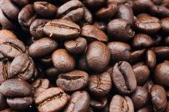 Kawowa fasola stara Zdjęcie Royalty Free