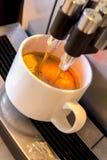 Kawowa maszyna robi świeżej filiżance expresso Fotografia Stock