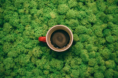 Kawowa przerwa? Zdjęcia Royalty Free