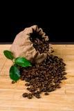 kawowa torby roślina obrazy stock