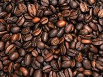 Kawowe Fasole Zdjęcia Royalty Free