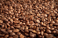 Kawowe fasole obraz stock