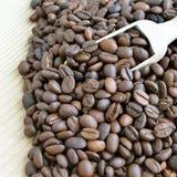 Kawowe fasole Fotografia Stock
