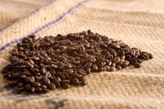 Kawowe fasole zdjęcie stock