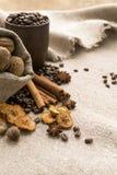 Kawowe fasole, cynamon, gwiazdowy anyż, orzechy włoscy, nutmeg, suszyli - owoc Obrazy Royalty Free
