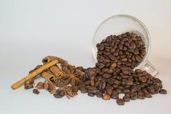 Kawowe fasole, filiżanka i pikantność, Zdjęcia Stock
