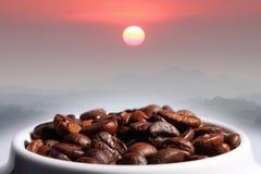 Kawowe fasole góra i słońce Zdjęcie Stock