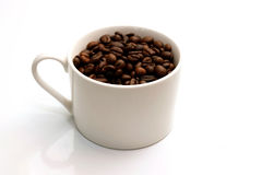 Kawowe fasole i Coffe Filiżanka obraz royalty free