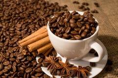 Kawowe fasole i filiżanka z cynamonem i anyżem zdjęcie royalty free
