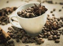 Kawowe fasole i gwiazdowy anyż w filiżance Zdjęcie Stock
