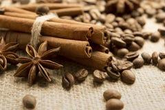 Kawowe fasole i gwiazdowy anyż z cynamonem Fotografia Royalty Free