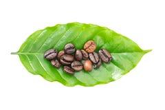Kawowe fasole i kawowy urlop na białym tle Obraz Stock