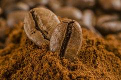Kawowe fasole nad zmielonym kawy zakończeniem w górę makro- zdjęcie royalty free