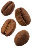 Kawowe fasole odizolowywać na bielu Zdjęcie Stock