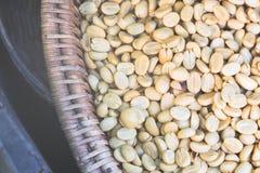 Kawowe fasole suszyć w słońcu przedtem Zdjęcia Royalty Free