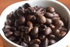 Kawowe fasole umieszczać w filiżance obrazy royalty free