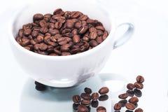 Kawowe fasole w białej filiżance na lustrze Fotografia Stock