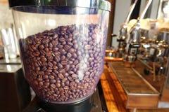 Kawowe fasole w coffe ostrzarzu zdjęcia royalty free