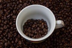 Kawowe fasole w filiżance, filiżanka kawy z fasolami Zdjęcie Royalty Free