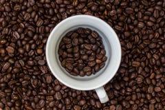 Kawowe fasole w filiżance, filiżanka kawy z fasolami Obraz Royalty Free