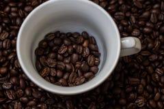 Kawowe fasole w filiżance, filiżanka kawy z fasolami Fotografia Stock